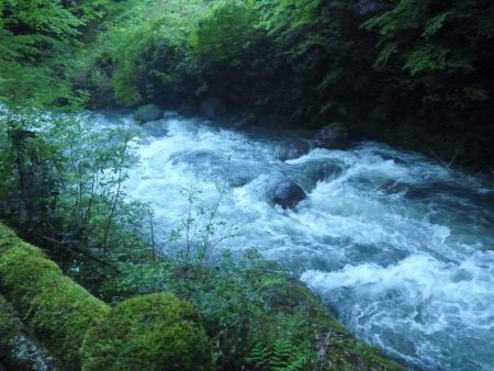 翌朝、粥川はこんなんなってた。